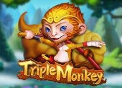 รีวิวเกมค่าย PG : Triple Monkey ลูกพี่วานรสามเท่า