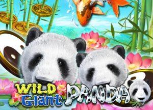 รีวิวเกมค่าย Joker : Wild Giant Panda แพนด้ายักษ์ในป่าใหญ่